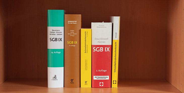 Literatursammlung Sozialgesetzbücher Schwerbehindertenvertretung